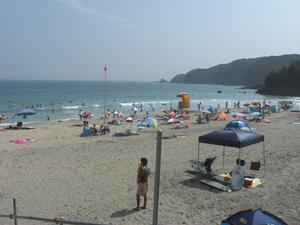伊豆の大浜でサーフィン