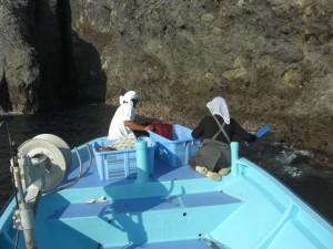 伊豆半島の最南端の弓ヶ浜の伊勢エビ漁 9月20日解禁