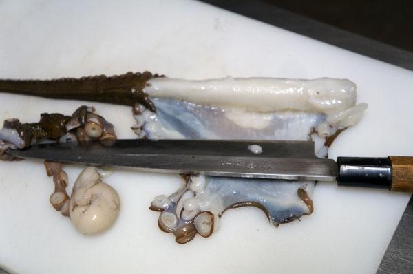 弓ヶ浜のタコ漁、地タコは刺身、塩ゆで、さくら煮、たこ飯がうまい。