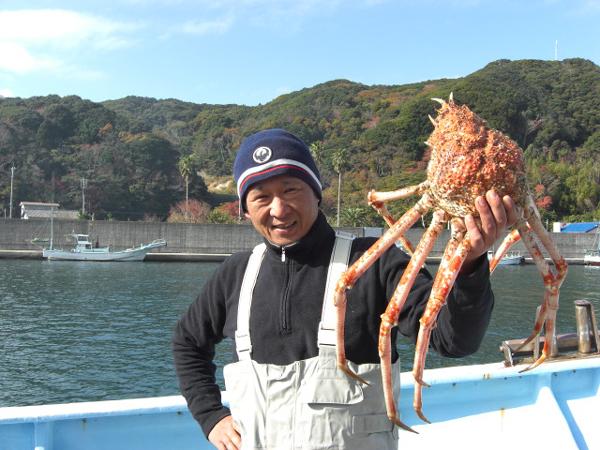 弓ヶ浜で高足ガニ漁が始まりました、南伊豆12月1日高足かに解禁