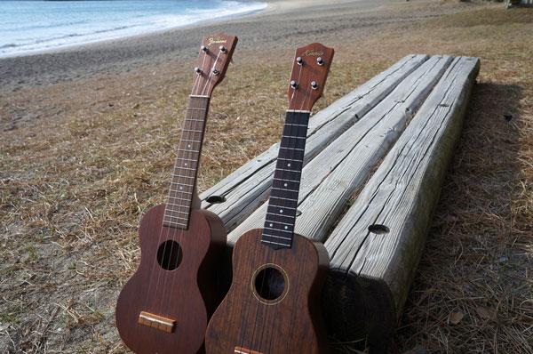 南伊豆ウクレレボーイズ募集中、弓ヶ浜ウクレレピクニック開催します