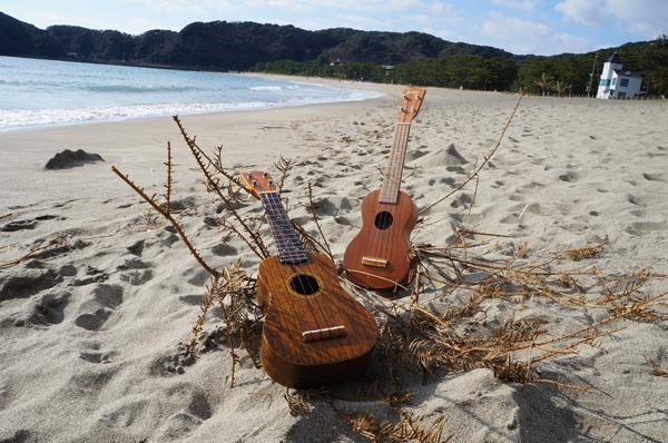 南伊豆ウクレレボーイズ を結成します! Ukulele On The Beach !