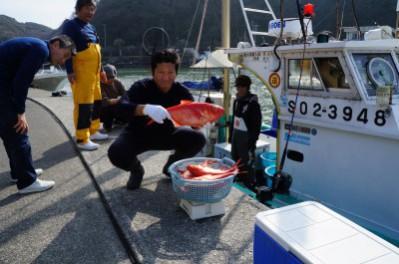 弓ヶ浜漁港の朝獲れ地魚、地金目鯛(ジキンメ)