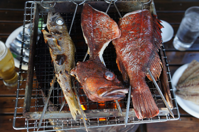 新鮮な地魚を炭火でコテージバーベキューできます。