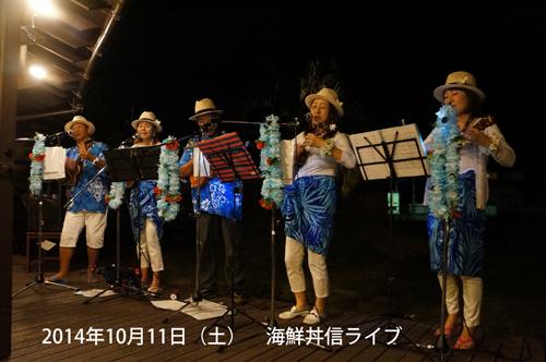 弓ヶ浜の海鮮丼屋「信」でのレストラン・ライブ
