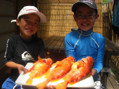 二人が釣った魚は南伊豆ブランドの高級魚アヤメカサゴ3匹でした。