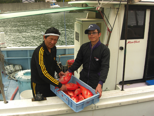 地金目鯛は毎年漁獲量が減り続けていて、値も上がり続けている。