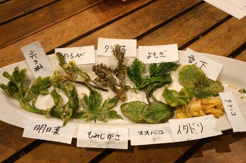 春の南伊豆の野草の天ぷら盛り合わせ
