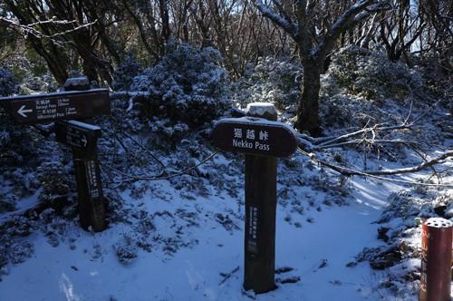 標高969m、猫越峠、伊豆山稜線歩道はここで直角に曲がる