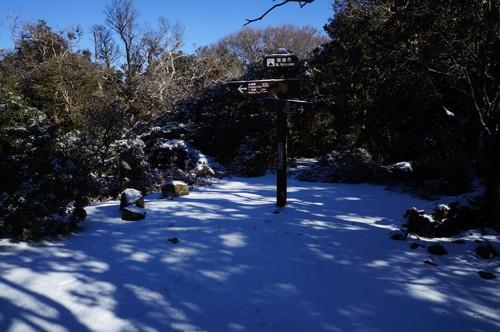 標高1034m、コース最高地点の猫越岳
