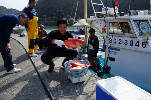 弓ヶ浜の波止場で水揚げされているジキンメ(地金目鯛)