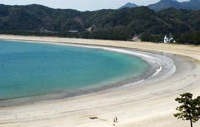 コテージ 伊豆 白浜